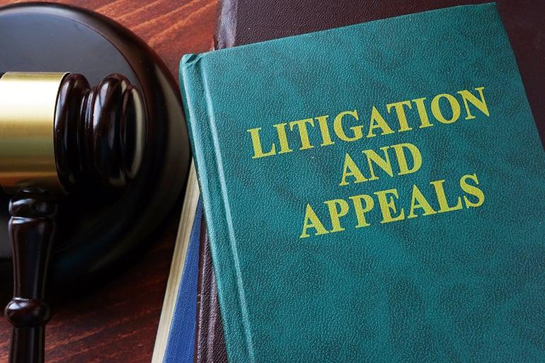 LitigationAndAppeals